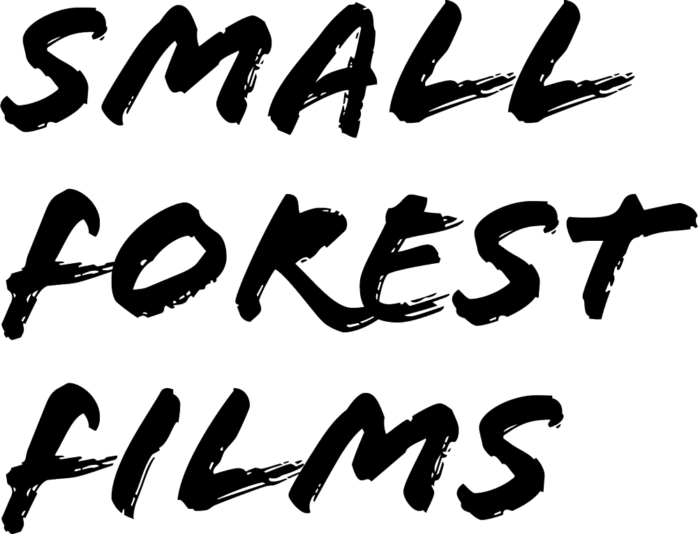 Small Forest Films: Philadelphia, Lehigh Valley & Northeast PA Wedding Videography